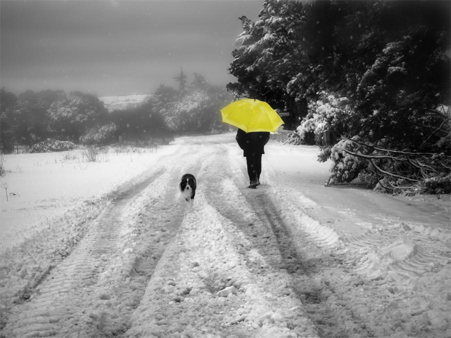 A spasso nella neve...