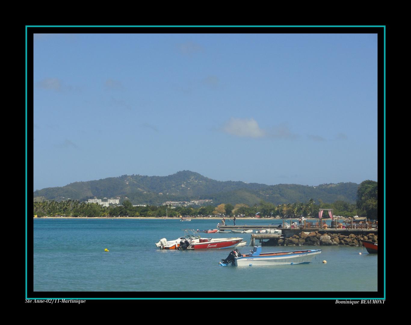 à Ste Anne-Février 2011-Martinique