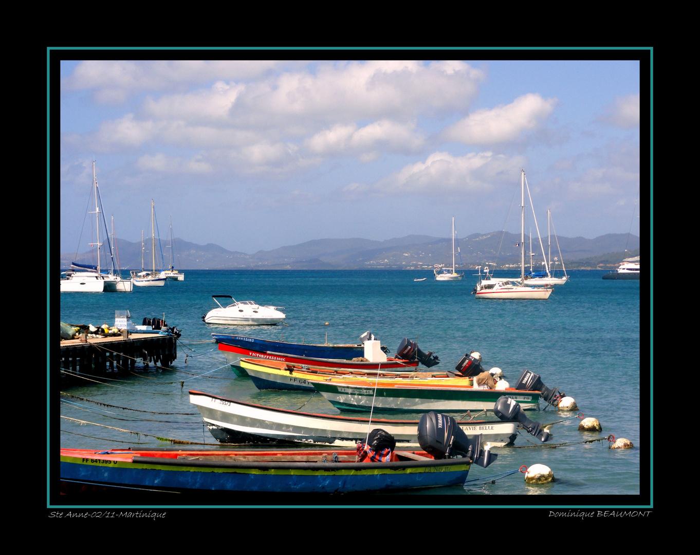 à Ste Anne - Février - Martinique