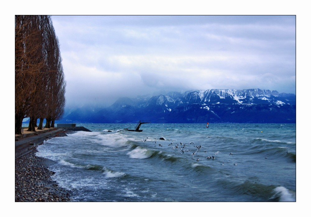 A stormy day at the lake (2)