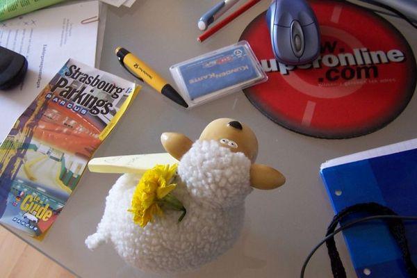 A stranger on my desk