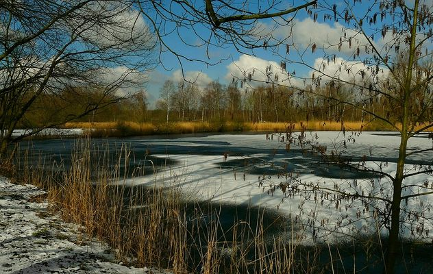 A touch of snow (2)