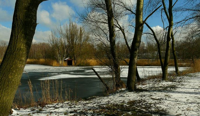 A touch of snow (3)