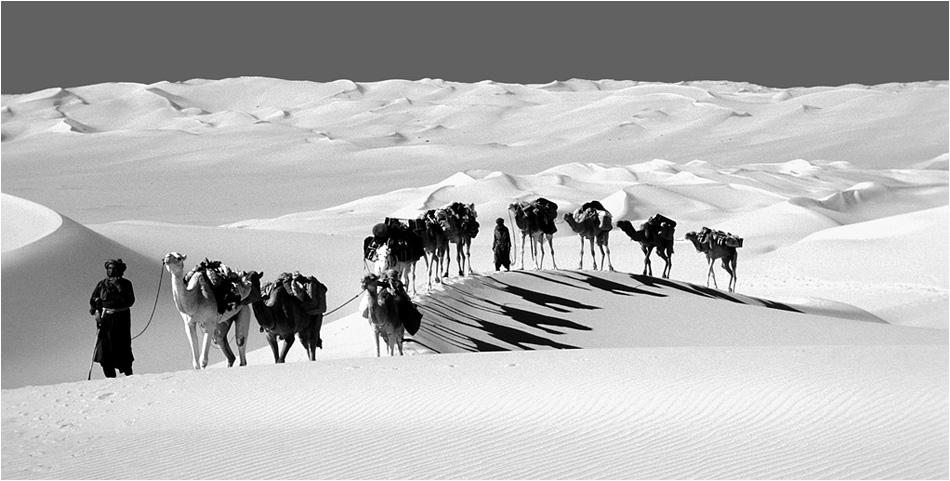A travers des dunes