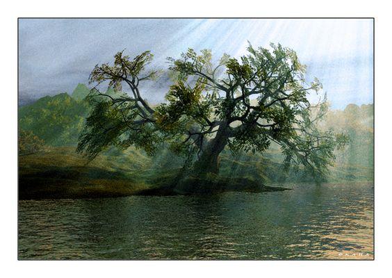 a tree fully light ....
