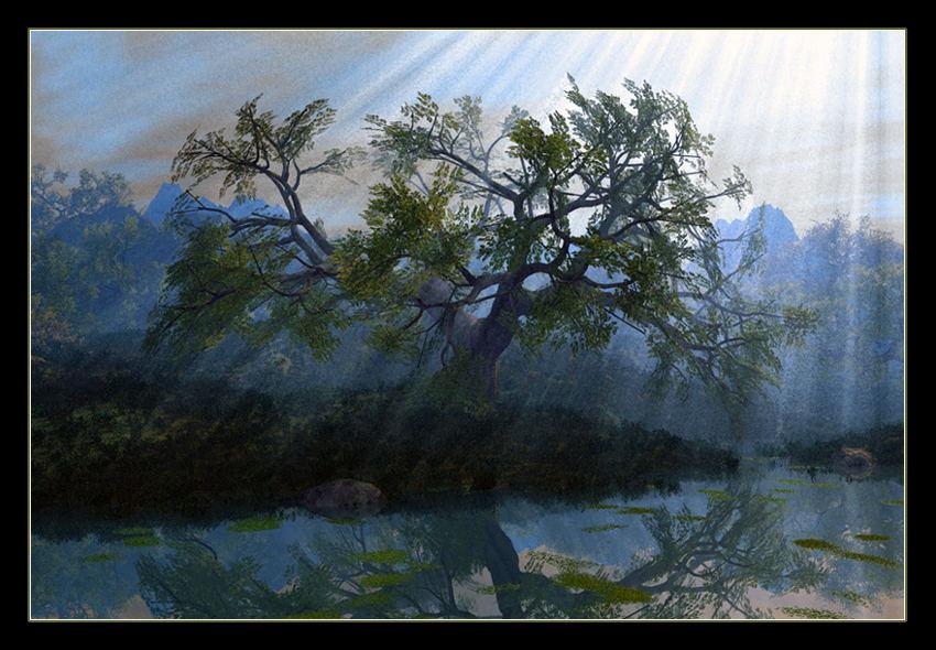 a tree fully light .... II