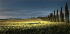 [ A U S Z E I T - 06 ] late afternoon in tuscany | 02