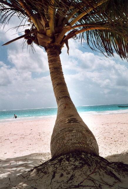 a una de las playas más hermosas...