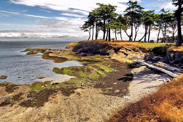 A Walk on the Island Shores