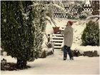 a winterfary tale