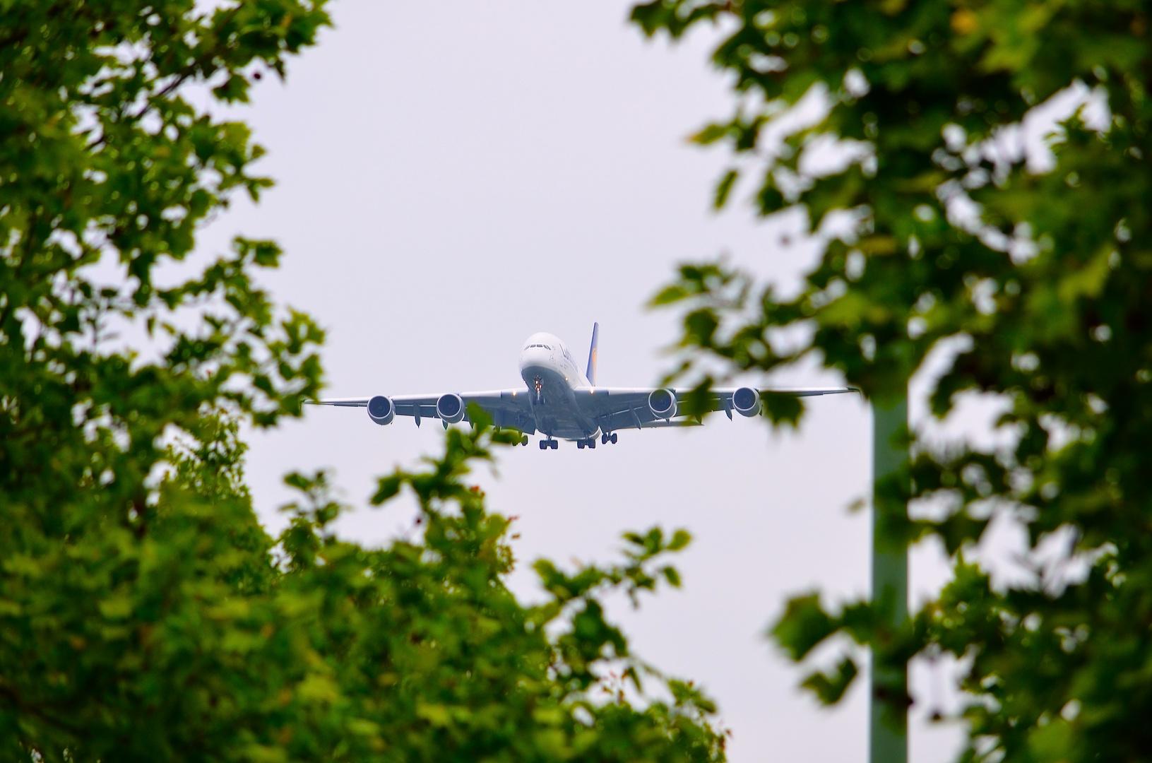 A380-800 Düsseldorf