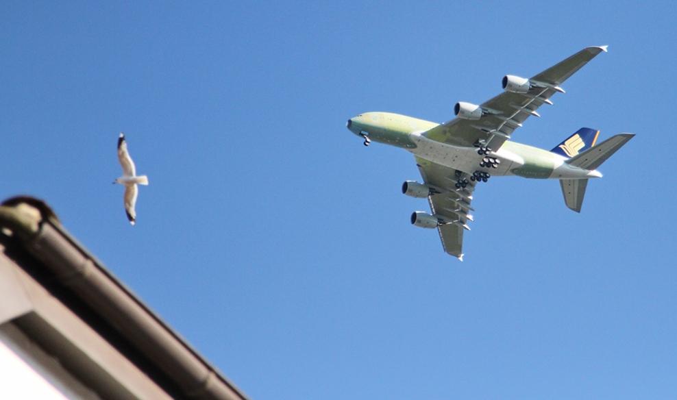 A380 über Buxtehude