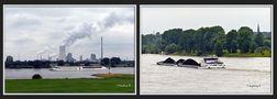 Am Rhein - vor der Kulisse des Kohlekraftwerks  Walsum von Ingeborg K