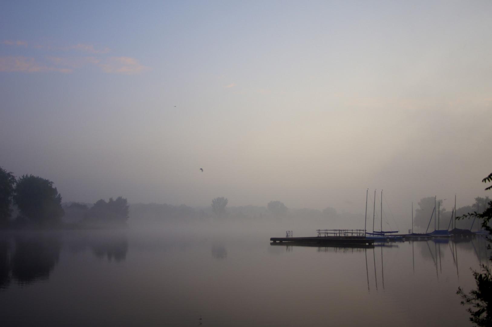Aasee im Nebel