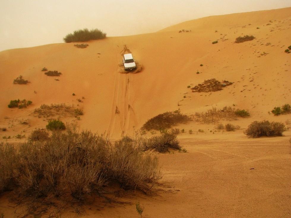 Ab in die Wüste
