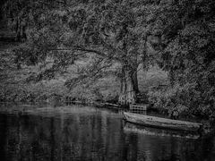 Abandoned Boat Story