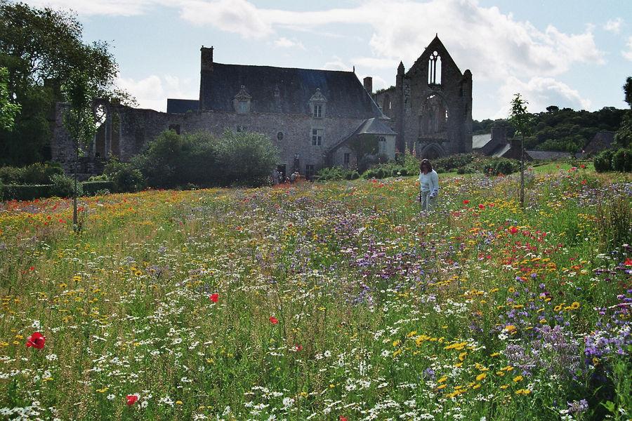 Abbaye Beauport 3