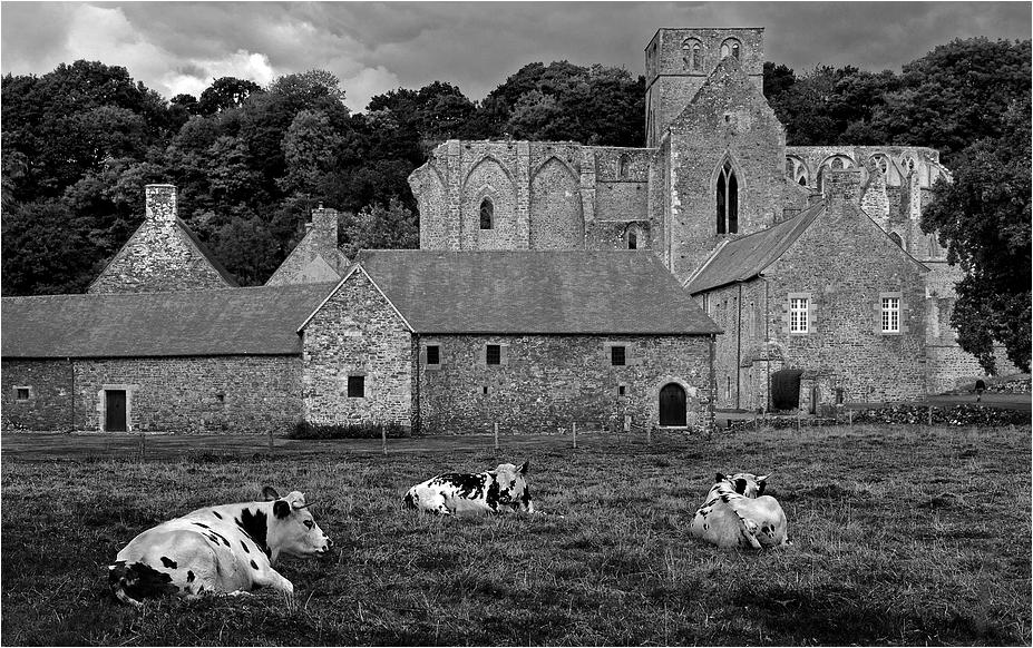 Abbaye de Hambye (Normandie)