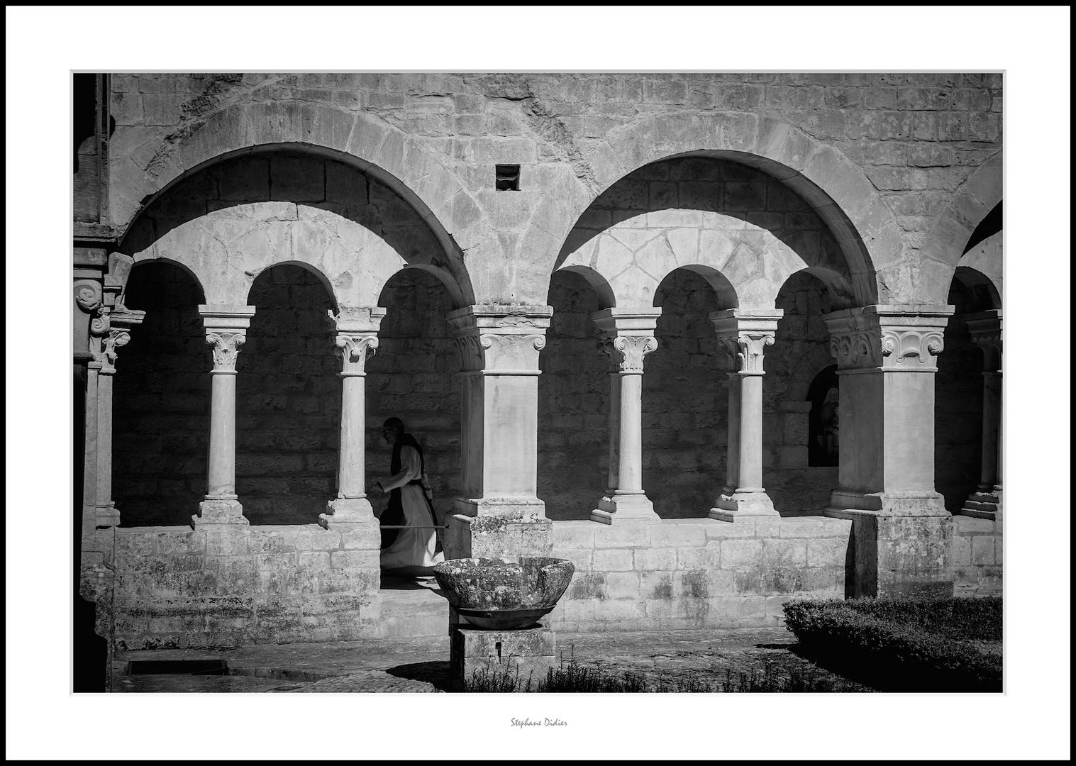 Abbaye de Senanque - Luberon