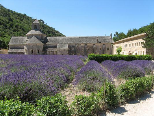 Abbaye de Sénanque (Vaucluse)