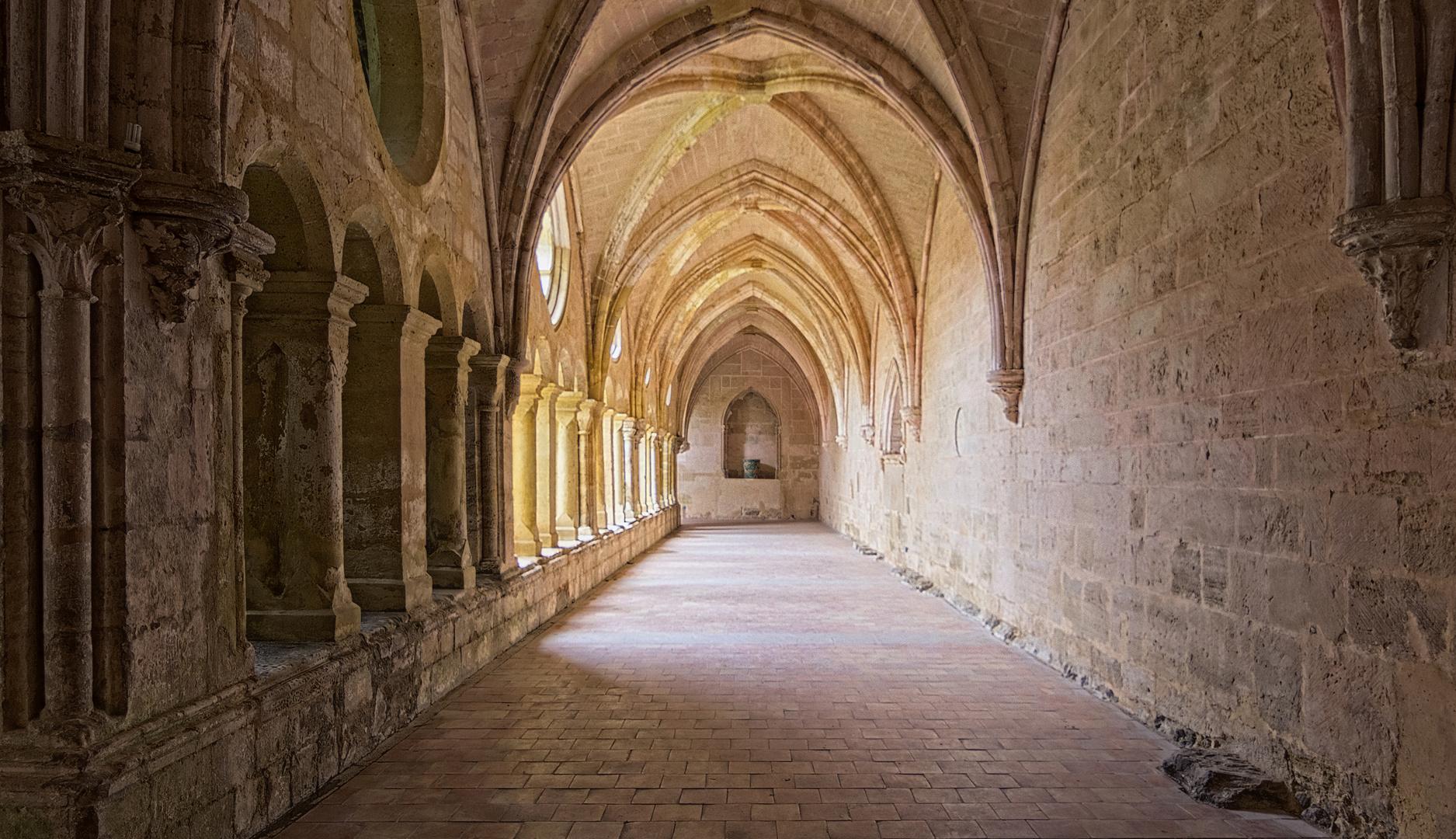 Abbaye de Valmagne -1-