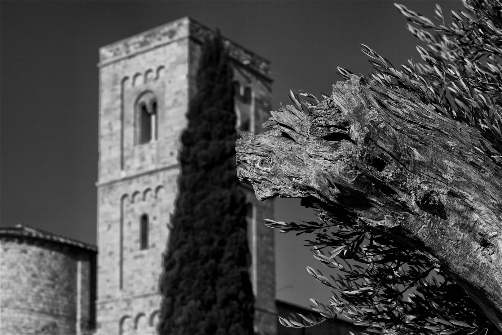 Abbazia die Sant' Antimo - S/W