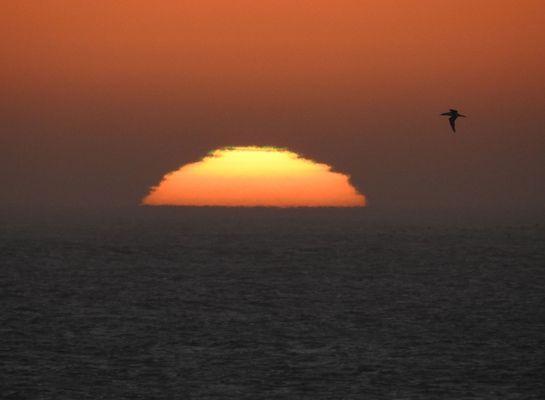 Abend am Cape Cross