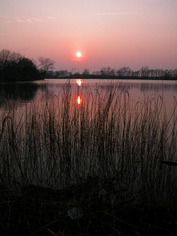 Abend am See 2