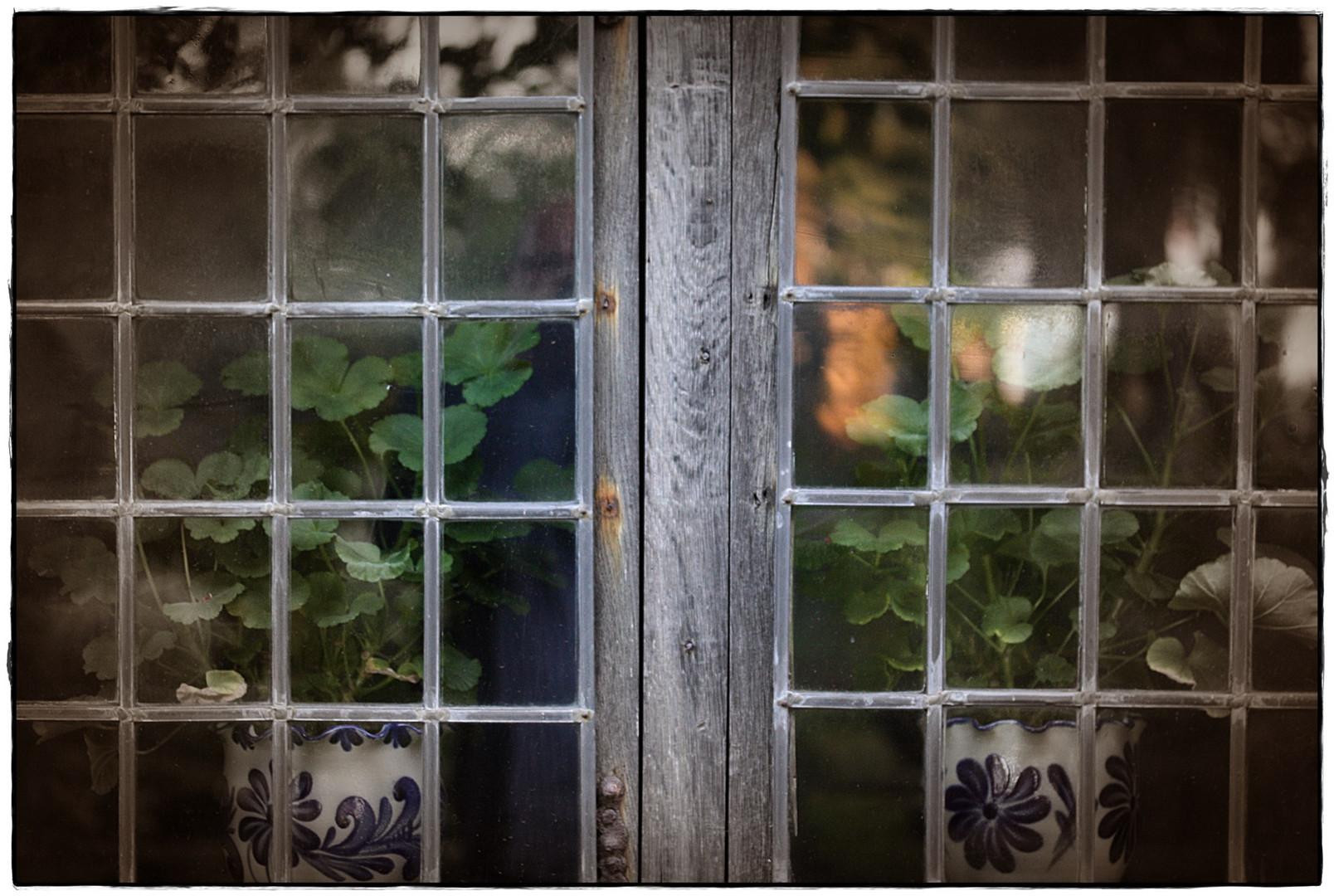 Abend an fremden Fenstern