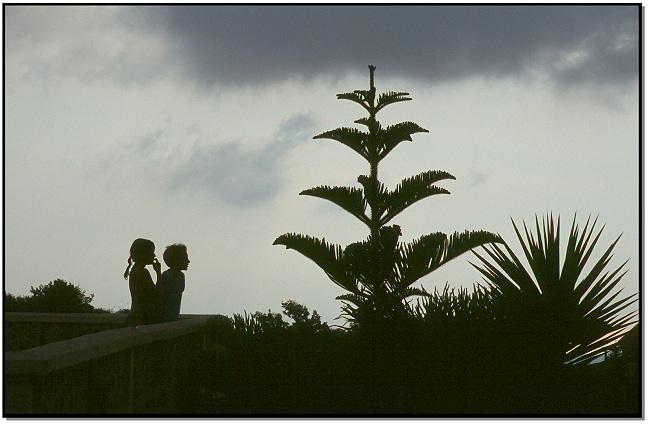 Abend auf Zypern - 12.10.2001