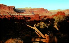 Abend im Capitol Reef Nationalpark