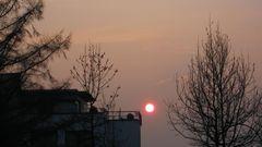 Abend-Sonne