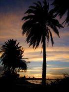 Abend über Fidschi