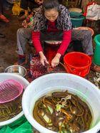 Abendessen Zubereitung in Chongqing