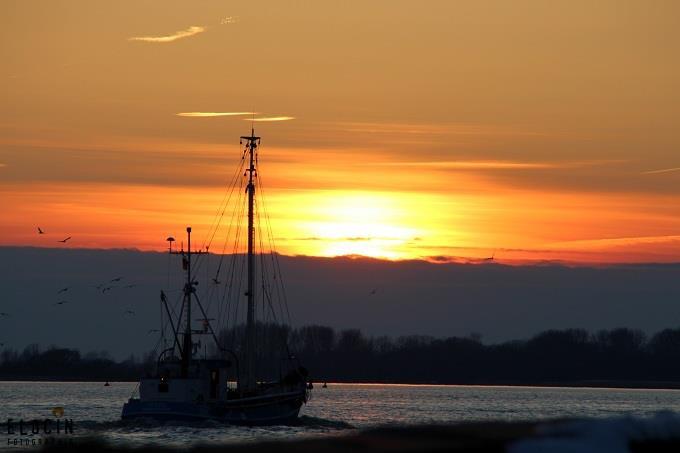 Abendfahrt an der Elbe