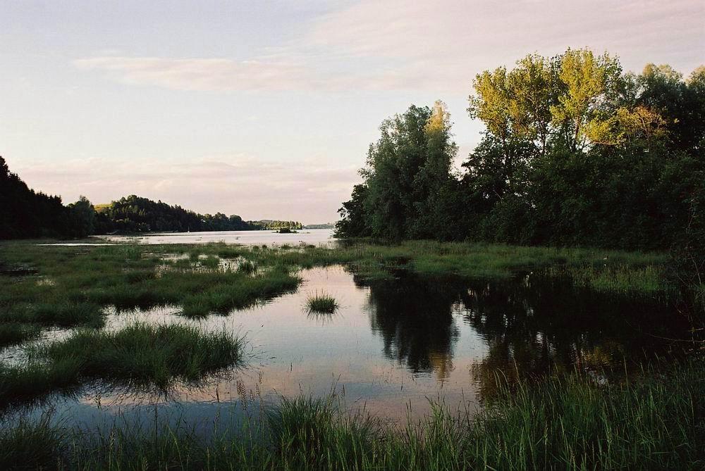 Abendfrieden am Forggensee