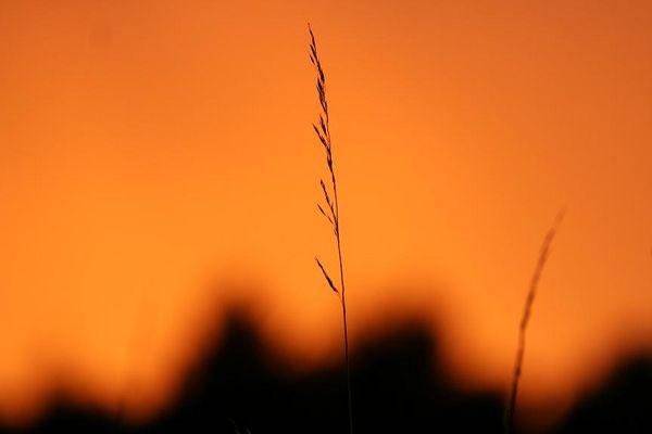Abendhimmel Ostseestrand