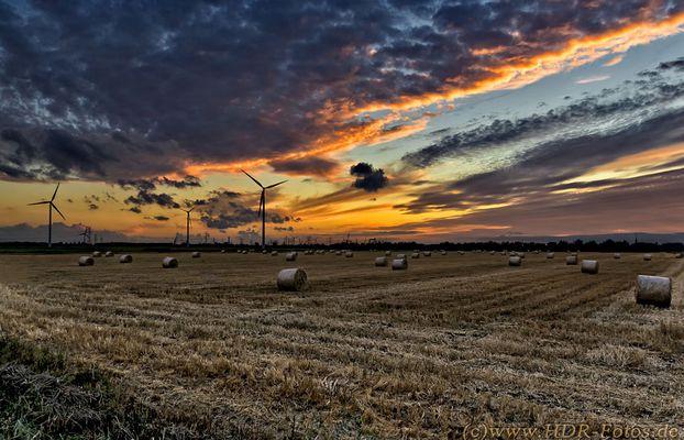 Abendhimmel über einem Feld