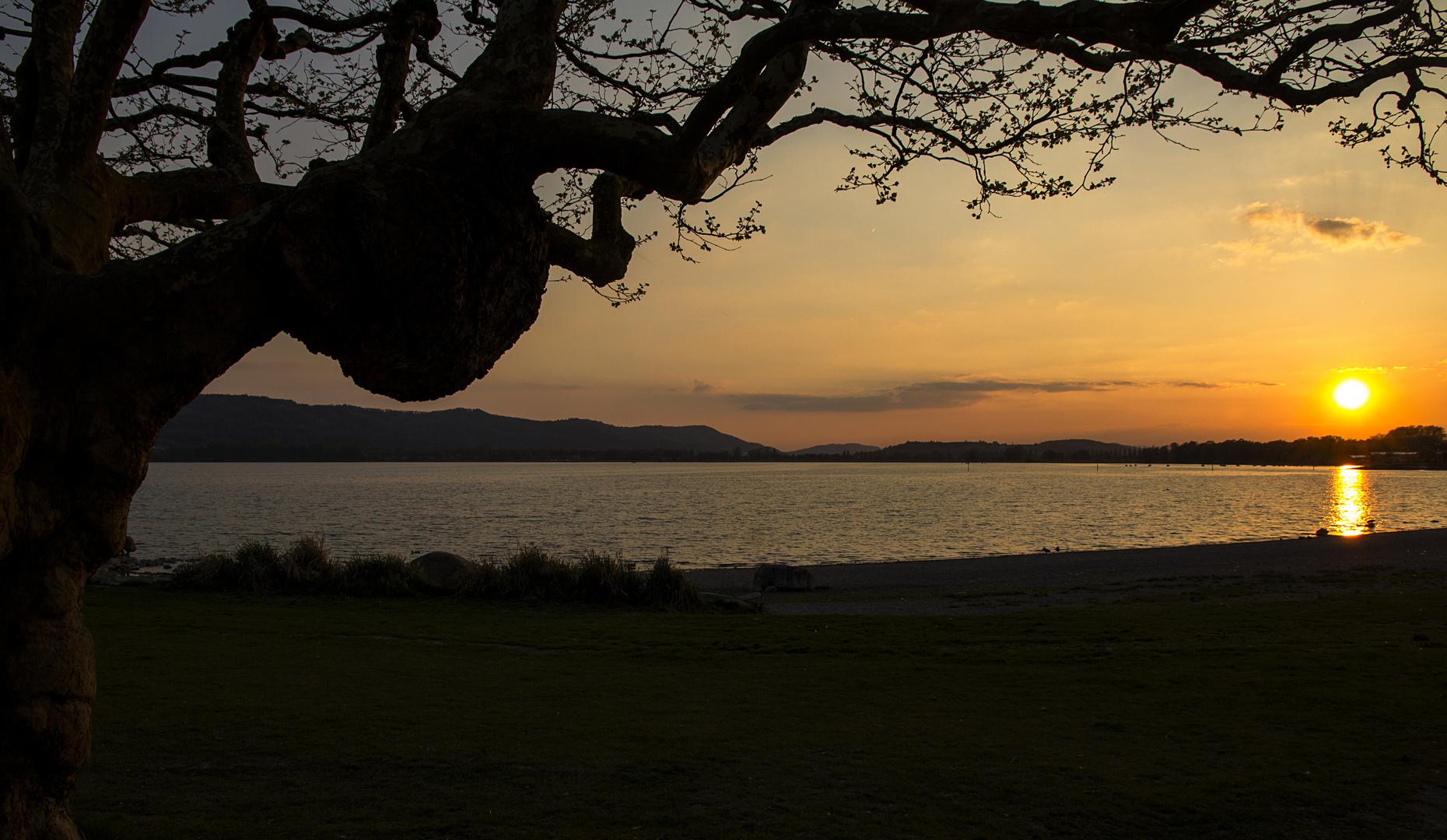 Abendliche Stille am See