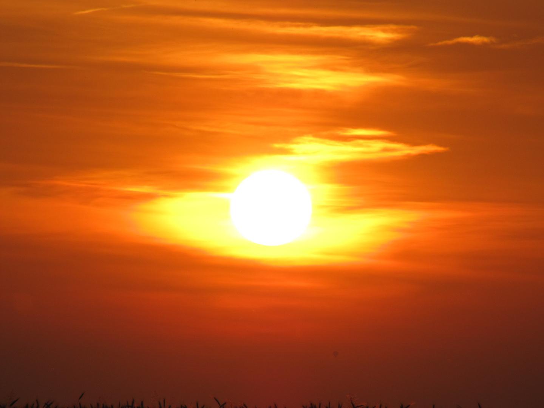 Abendlicher Sonnenuntergang