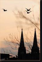 abendliches Regensburg