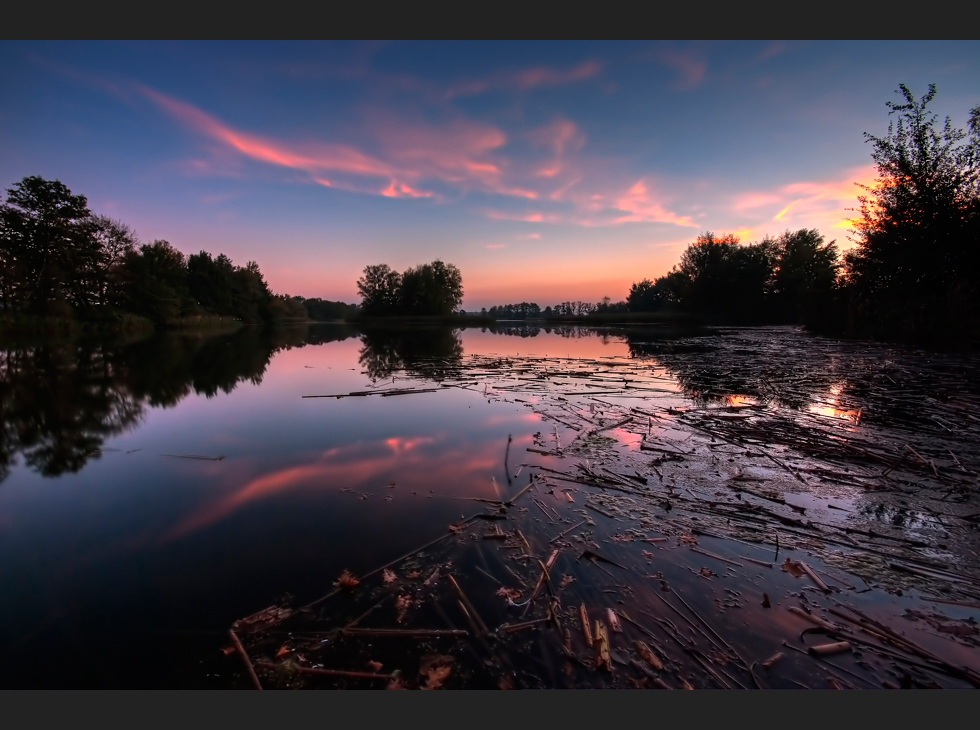 Abendlicht am Teich