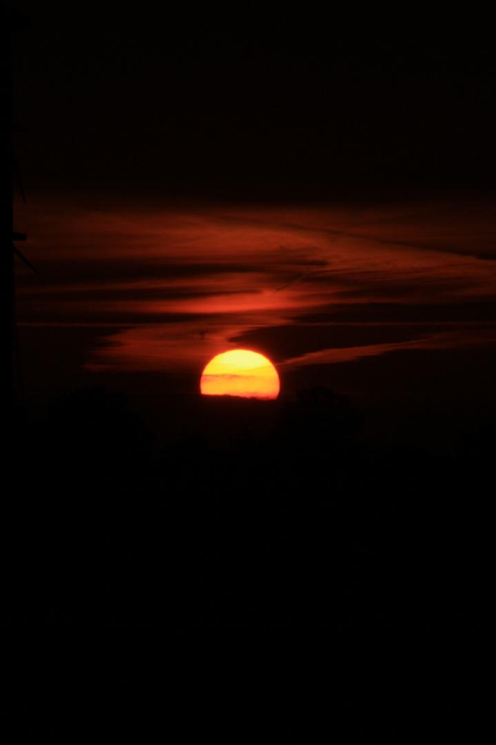 Abendlicht am Windrad2