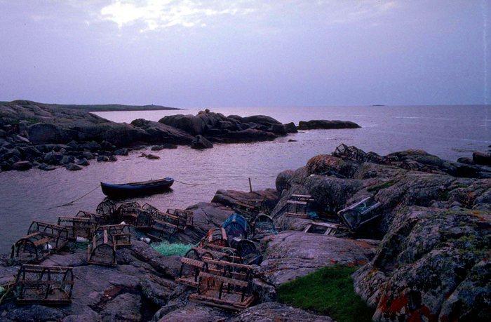 Abendlicht an Irlands Küste
