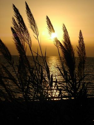 Abendlicht im Morgenland