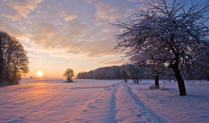 Abendlicht im Winter