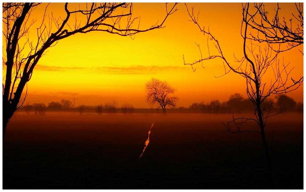 Abendnebel begleitet die Sonne.....