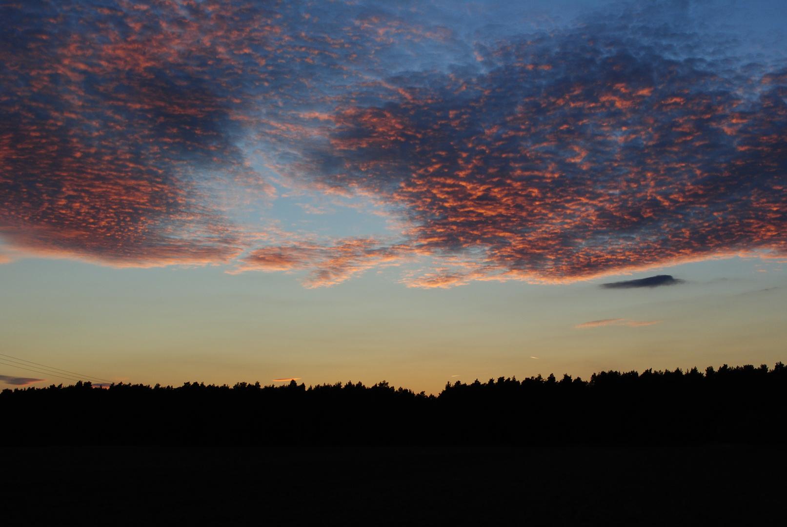 Abendrot über dem Wald