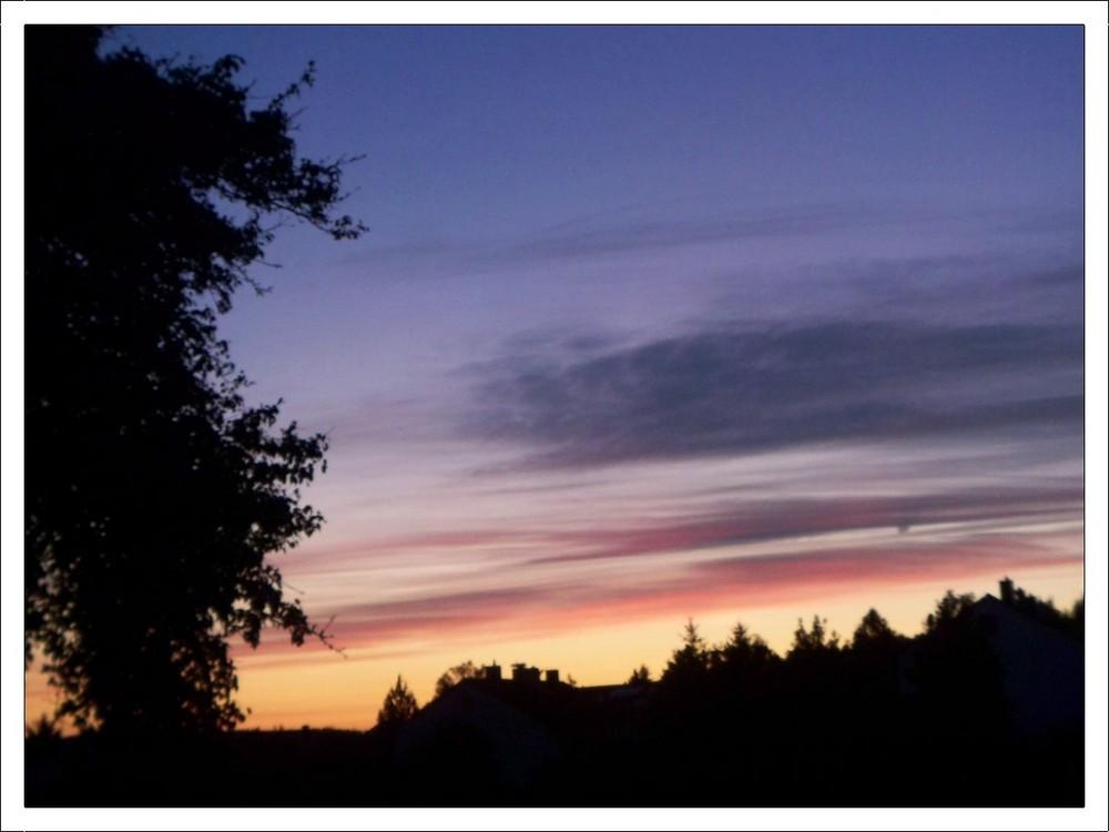 Abends am Birnbaum...