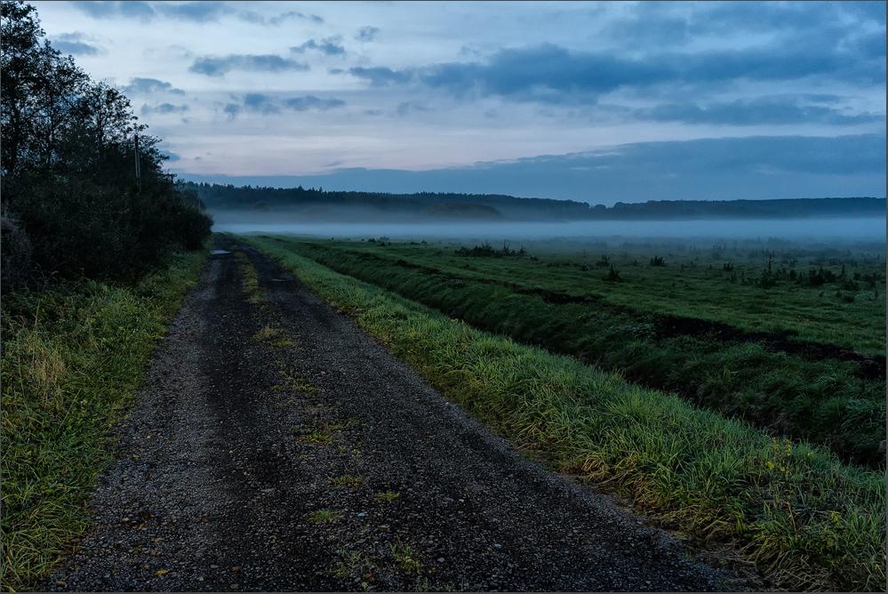 Abends, auf dem Heimweg